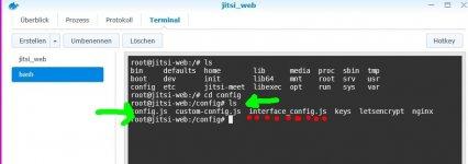 terminalview-configdirectory-container-jitsi_web.jpg