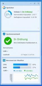 NAS DS216j Auslastung Drive Client 3.0.0.JPG